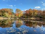 Fall Reflections by Jennifer M. Macaulay